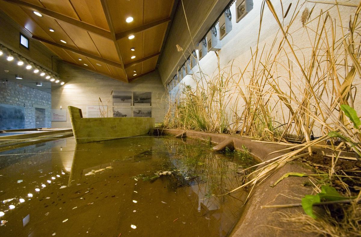 Μουσείο Περιβάλλοντος Στυμφαλίας | ΠΙΟΠ